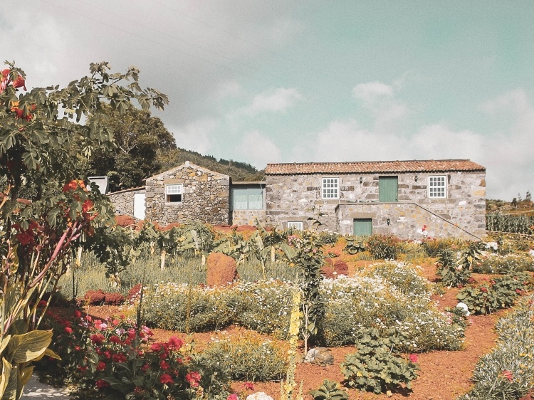 Adegas do Pico Azores Portugal Beste Ferien hausen