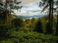 Wohnen im  Linthwaite House Bowness-on-Windermere Cumbria frische Luft Wald Bäume