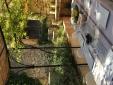 Mas des Oules_Magnolia's terrace