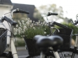 Skovshoved Hotel Copenhague Hotel beste